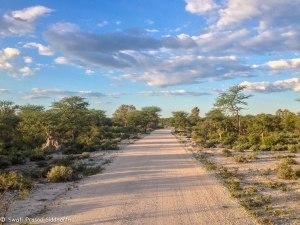 Namibia, A Road Trip - 2 - Onguma, Etosha-15