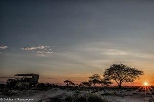 Namibia, A Road Trip - 2 - Onguma, Etosha-21