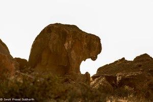 Namibia, A Road Trip - 3 - Damaraland-11