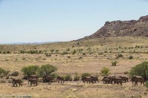 Namibia, A Road Trip - 3 - Damaraland-21
