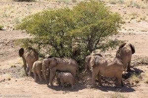 Namibia, A Road Trip - 3 - Damaraland-22