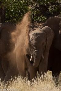 Namibia, A Road Trip - 3 - Damaraland-24