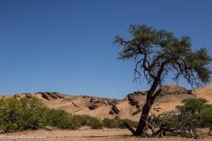 Namibia, A Road Trip - 3 - Damaraland-27