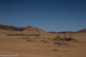 Namibia, A Road Trip - 3 - Damaraland-30
