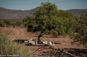 Namibia, A Road Trip - 3 - Damaraland-4