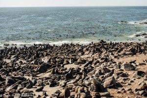 Namibia, A Road Trip - 4 - Skeleton Coast-18