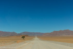 Namibia, A Road Trip - 5 - Wolwedans-15