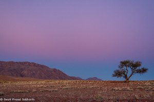 Namibia, A Road Trip - 5 - Wolwedans-20