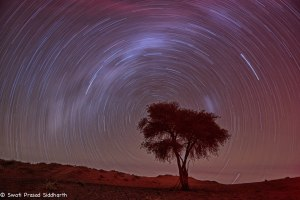 Namibia, A Road Trip - 5 - Wolwedans-23