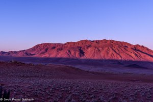 Namibia, A Road Trip - 5 - Wolwedans-35