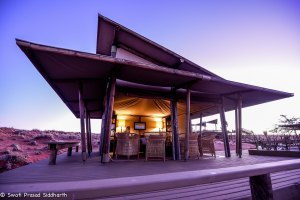 Namibia, A Road Trip - 5 - Wolwedans-38