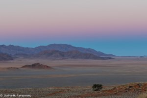 Namibia, A Road Trip - 5 - Wolwedans-43
