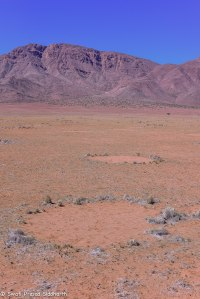Namibia, A Road Trip - 5 - Wolwedans-45