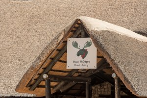 Namibia, A Road Trip - 5 - Wolwedans-6