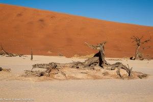 Namibia, A Road Trip - 6 - Sossusvlei, Dead Vlei-17