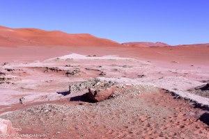Namibia, A Road Trip - 6 - Sossusvlei, Dead Vlei-19