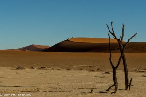 Namibia, A Road Trip - 6 - Sossusvlei, Dead Vlei-21