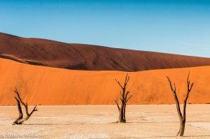 Namibia, A Road Trip - 6 - Sossusvlei, Dead Vlei-28