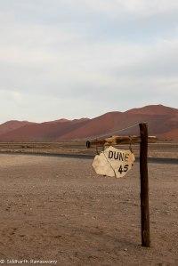 Namibia, A Road Trip - 6 - Sossusvlei, Dead Vlei-34