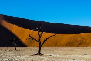 Namibia, A Road Trip - 6 - Sossusvlei, Dead Vlei-39
