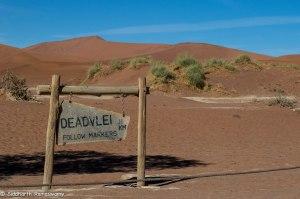 Namibia, A Road Trip - 6 - Sossusvlei, Dead Vlei-6