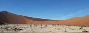 Namibia, A Road Trip - 6 - Sossusvlei, Dead Vlei-7
