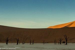 Namibia, A Road Trip - 6 - Sossusvlei, Dead Vlei-9